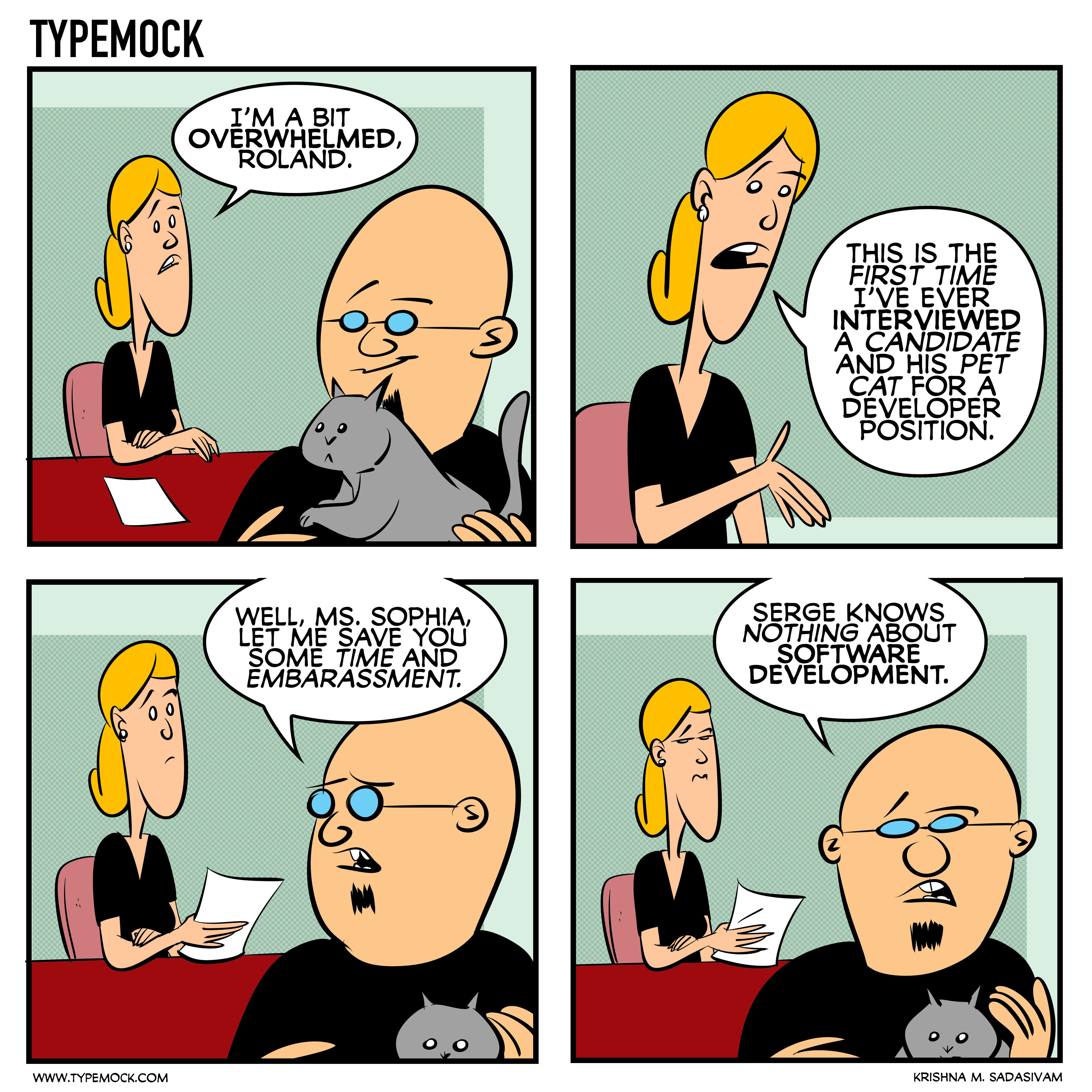 Developer Hell, comic, Typemock comic, c§